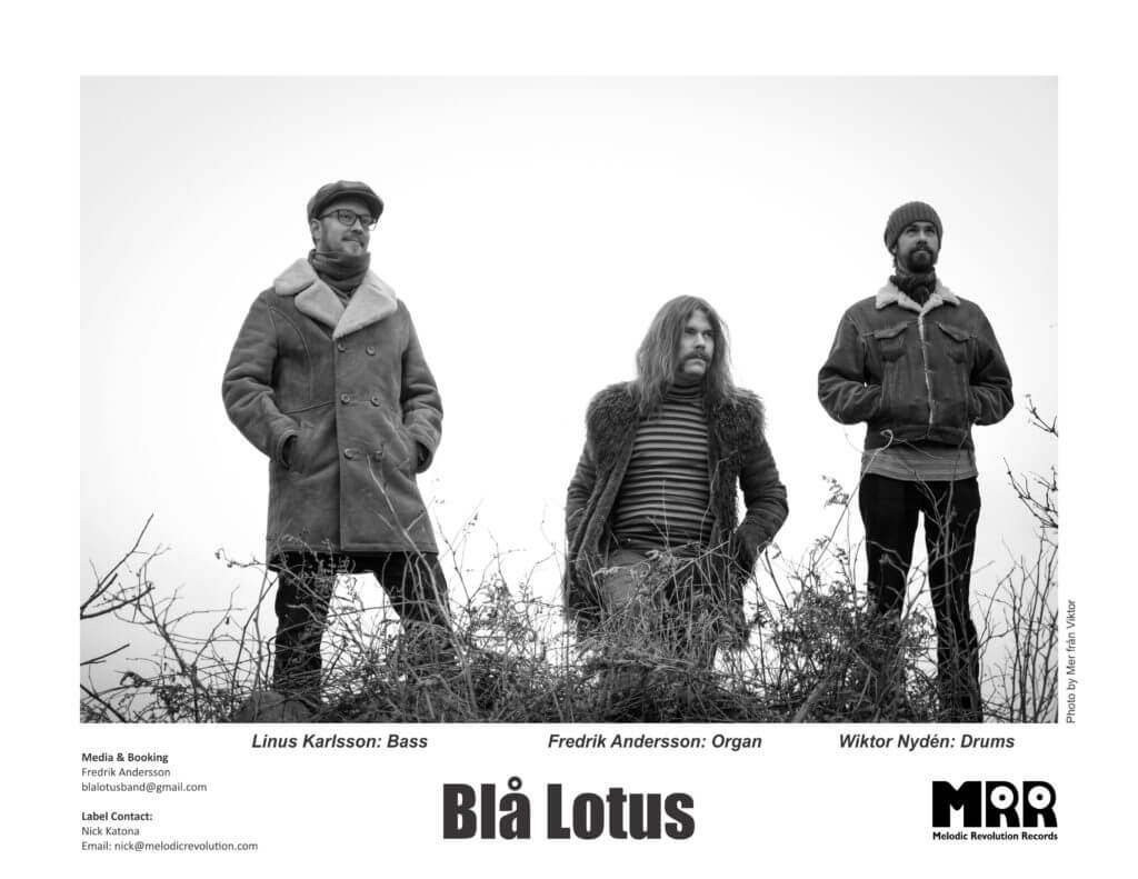 Blå Lotus Press Photo